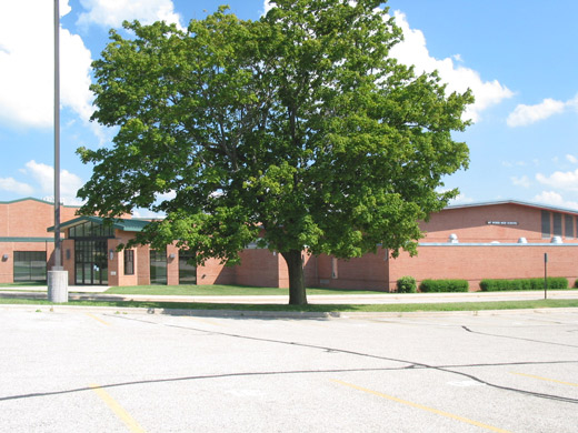 Mt Horeb High School