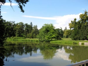 Deeded Access to Lake