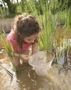 Child standing in water with net